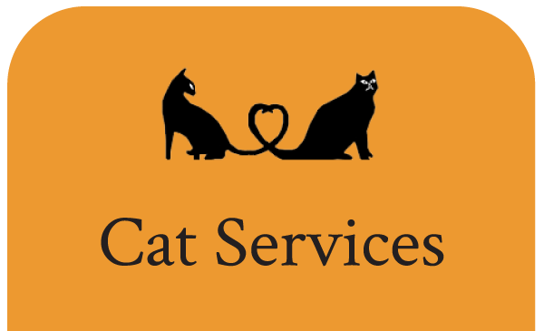 Cat Services at our Cat Clinic