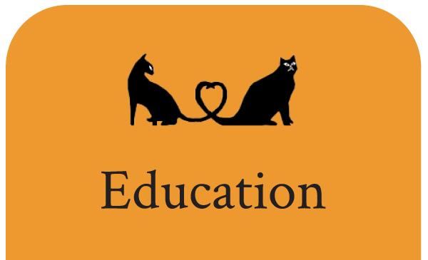 Vet Education For Cats